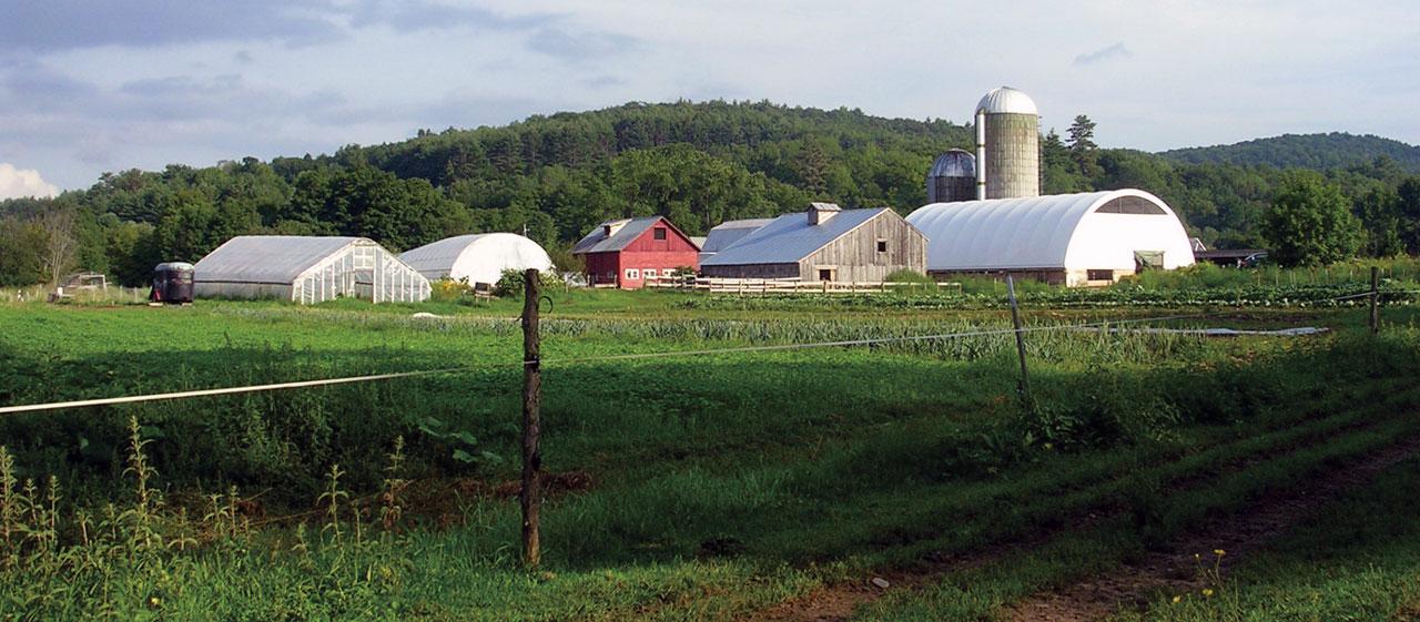 Fjordworks Primary Tillage at Cedar Mountain Farm