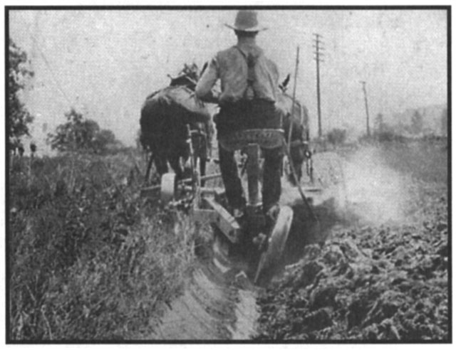 Cultivating Questions Managing Clay Soils