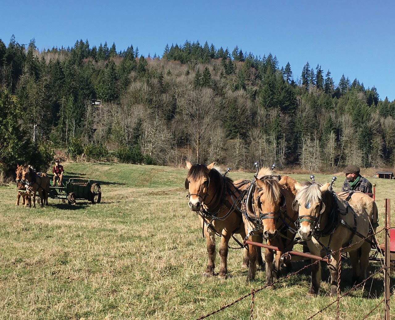 LittleField Notes Tales from the Bozeman Trail Part 2