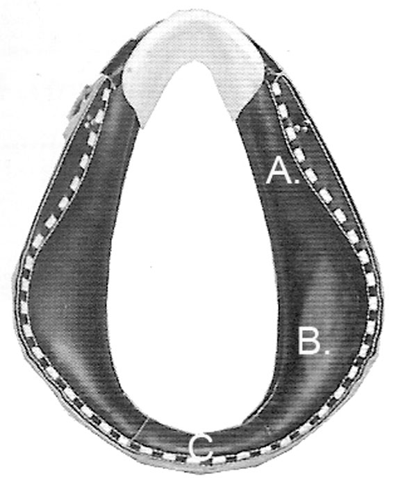 Ask a Teamster A Common Collar Fitting Challenge