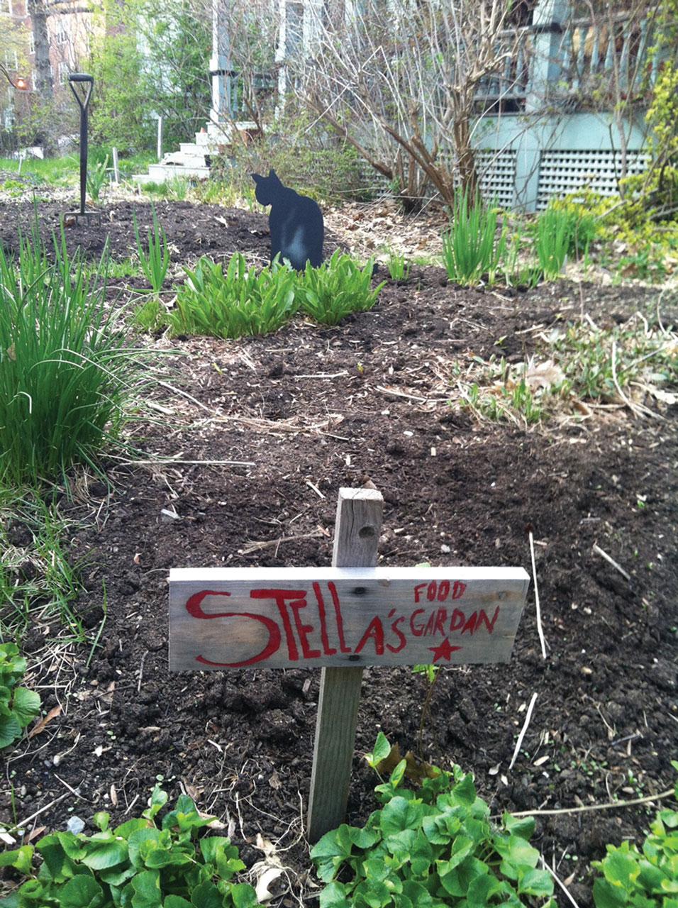 Stellas Food Garden