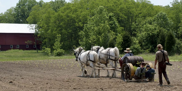 Carriage Hill Farm Visit