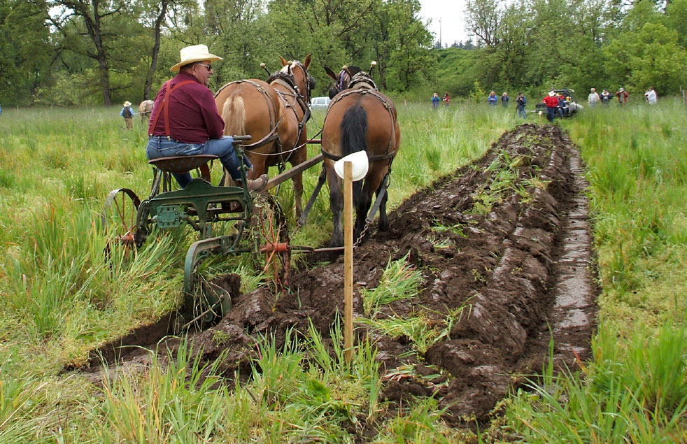 Oregons New Old Plowing Match