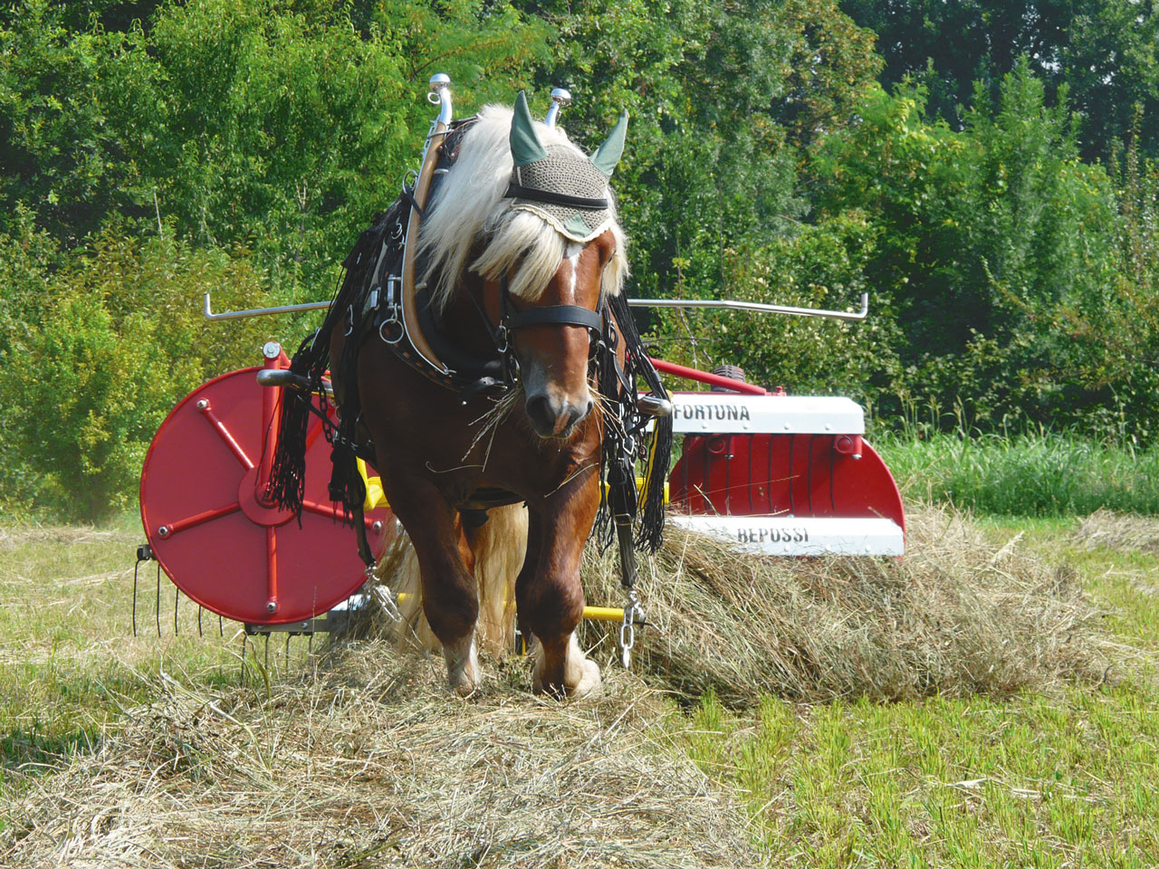 The State of Horsedrawn Technologies