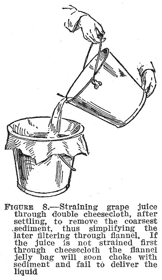 Unfermented Grape Juice