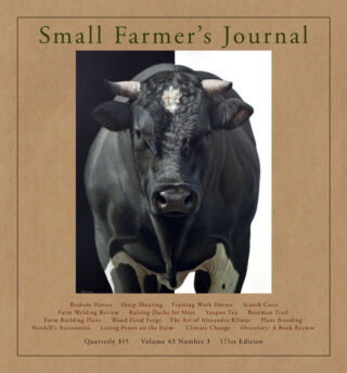 Small Farmers Journal Vol 43 No 3