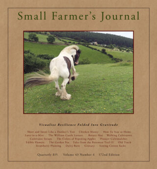 Small Farmers Journal Vol 43 No 4