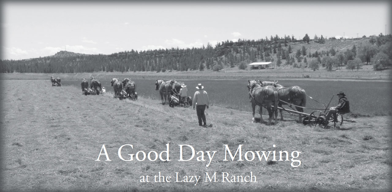 A Good Day Mowing at the Lazy M Ranch