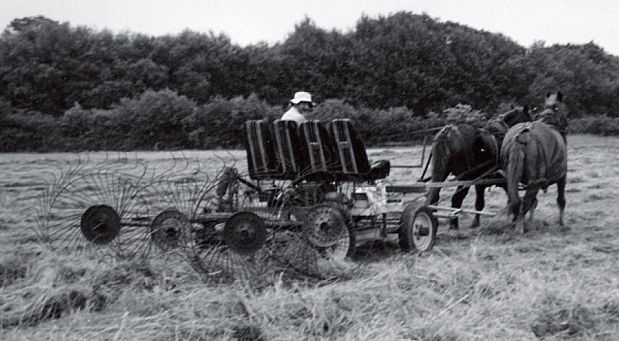 Horse-Powered Disc Mower