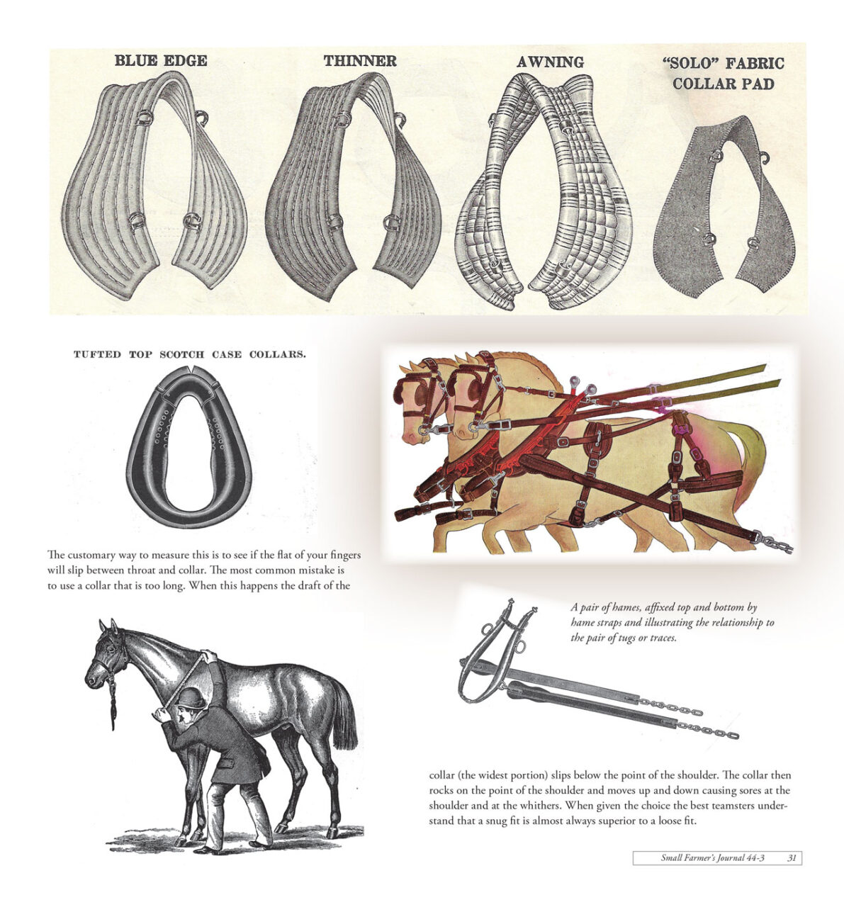 Work Horse and Mule Harness Design and Function Part 1