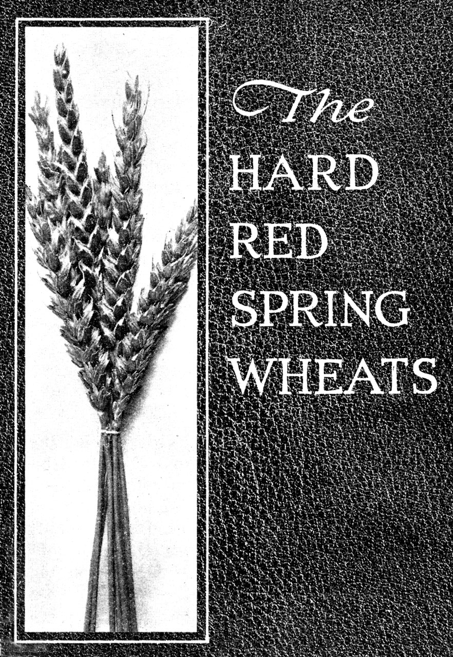 The Hard Red Spring Wheats