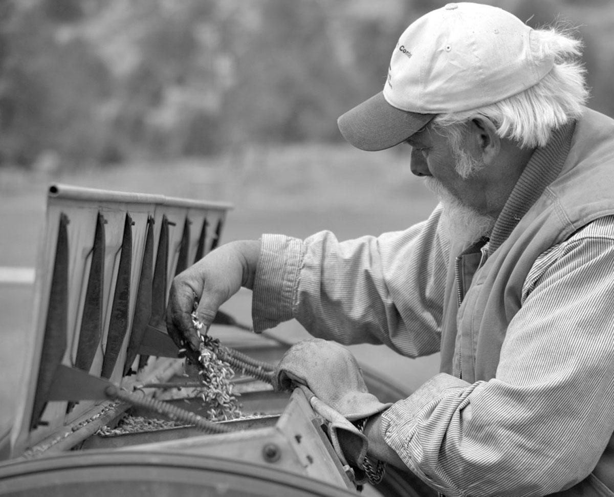 Old Man Farming