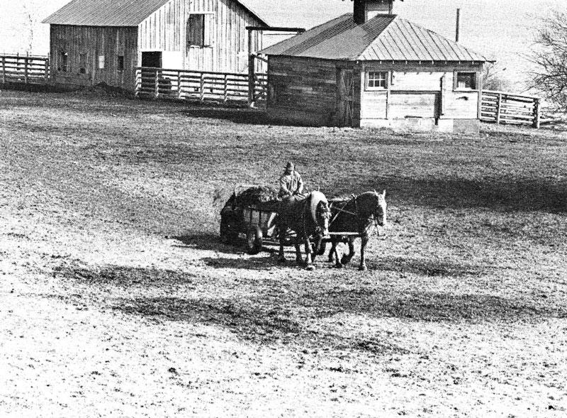 San Francisco Ranch