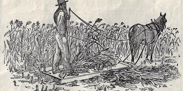 Ziegler Corn Harvester
