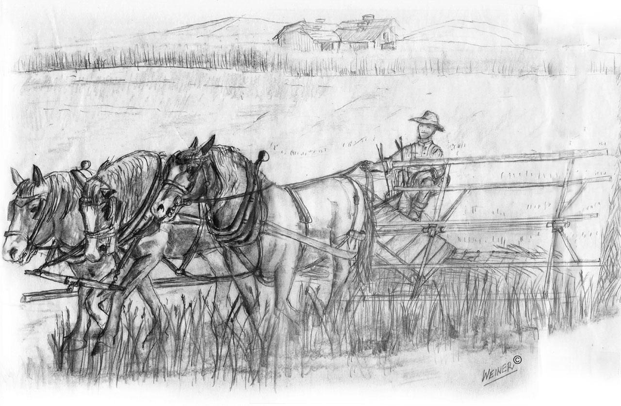 The Grain Binder
