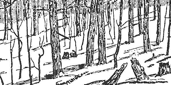 Rural Ramblings Winter 1986