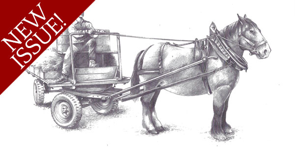 The Hitches for Draught Horses New Guidebook from Schaff mat Päerd